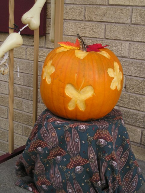 Pumpkin a day u my not so easy carved pumpkin « oh what a