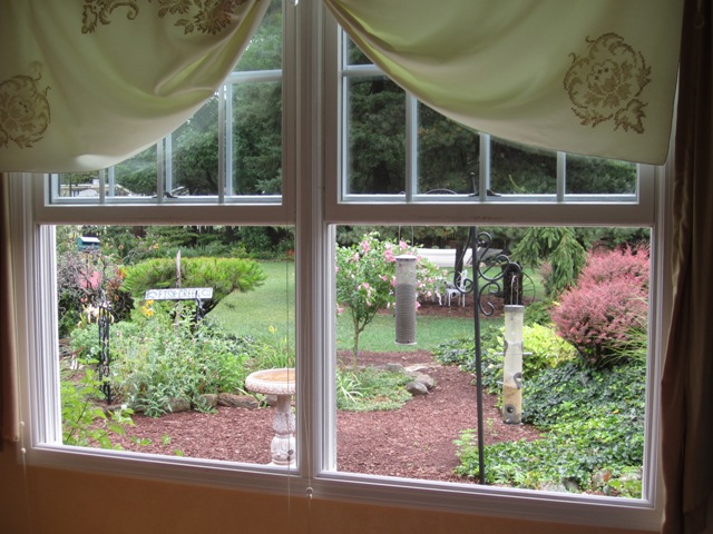 View From The Bedroom Window « Oh What A Beautiful Garden ...