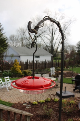 Hummingbird feeder IMG_7549 (267x400)